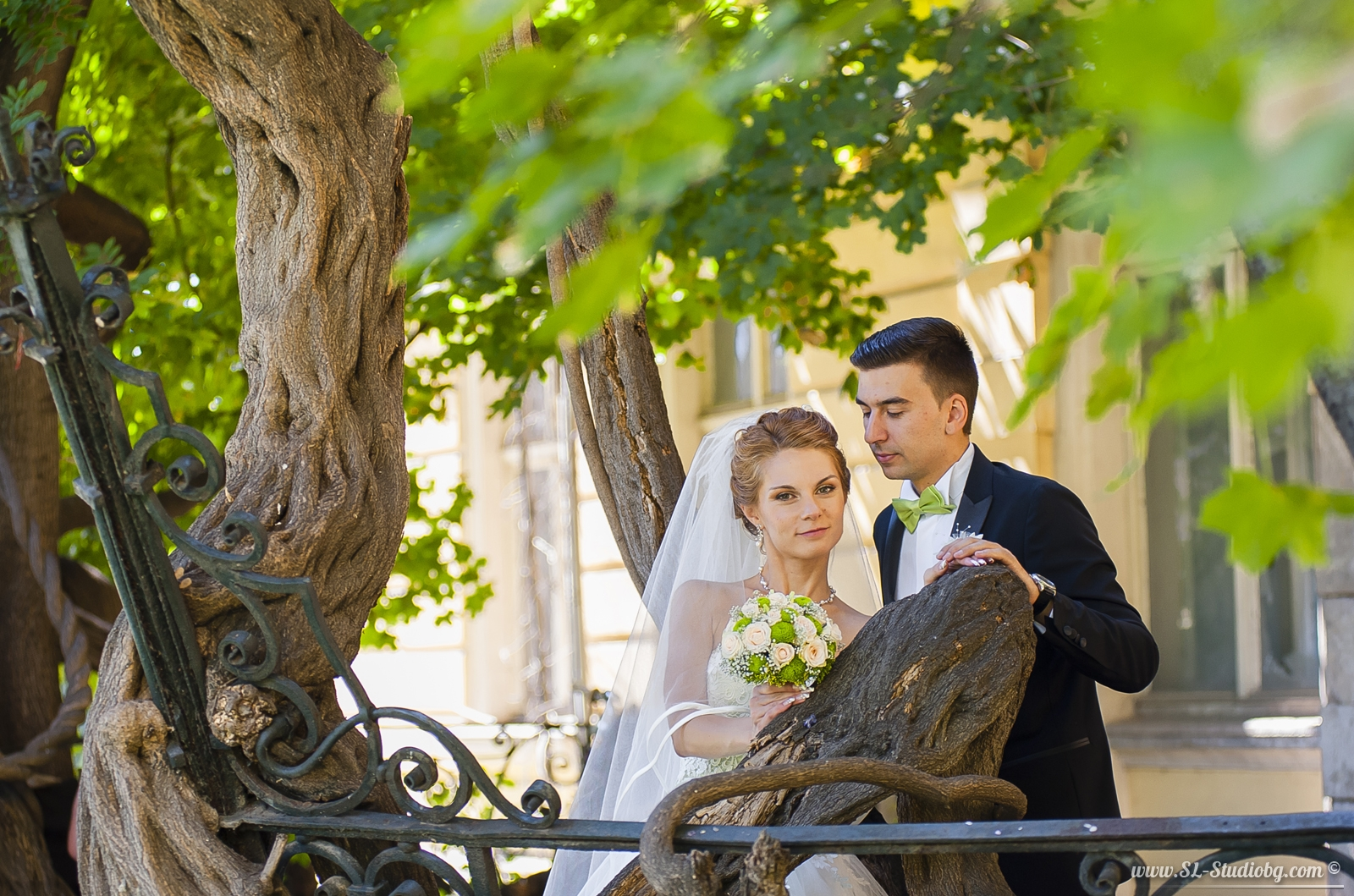 Сватбени снимки – Елена и Димитър